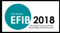 EFIB 2018